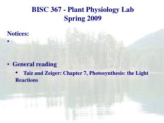 Plant Biology Fall 2006