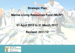 Strategic Plan Marine Living Resources Fund (MLRF) 01 April 2012 to 31 March 2017 Revised: 2011/12