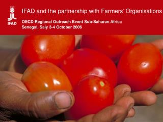 IFAD: Origins and Mandate