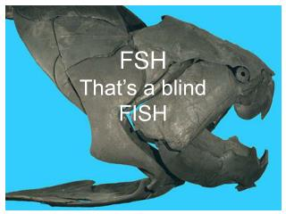 FSH That's a blind  FISH