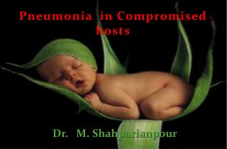 Pneumonia  in Compromised hosts