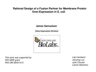Rational Design of a Fusion Partner for Membrane Protein  				Over-Expression in E. coli