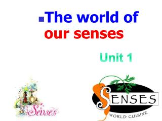 The world of  our senses