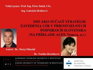 IMS AKO SÚČASŤ STRATÉGIE ZAVEDENIA CSR VPRIEMYSELNÝCH PODNIKOCH SLOVENSKA