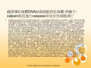 鎘誘導粒線體 DNA 缺損細胞經粒線體 - 鈣離子 -calpain 路徑進行 caspase 非依存性細胞凋亡