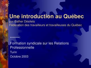 ******* Formation syndicale sur les Relations Professionnelle Turin Octobre 2003