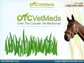 Joint Care Supplements For Horses