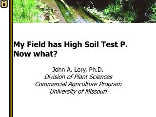 My Field has High Soil Test P.  Now what