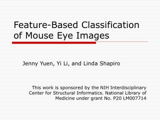Feature-Based Classification of Mouse Eye Images