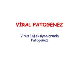 VİRAL PATOGENEZ