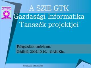 A SZIE GTK  Gazdasági Informatika  Tanszék projektjei