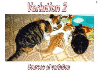 Variation 2