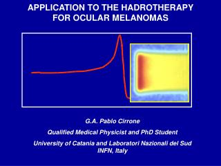 APPLICATION TO THE HADROTHERAPY FOR OCULAR MELANOMAS