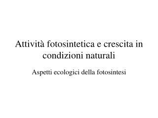 Attivit� fotosintetica e crescita in condizioni naturali