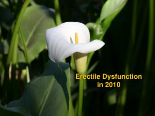 Erectile Dysfunction  in 2010