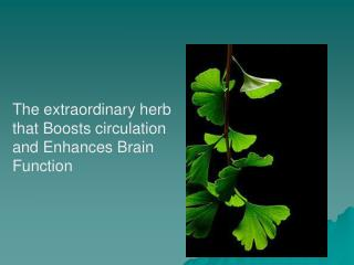 The extraordinary herb that Boosts circulation   and Enhances Brain Function