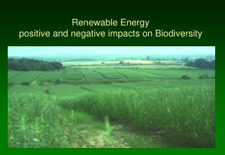 Renewable Energy  positive and negative impacts on Biodiversity