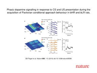 SB Flagel  et al. Nature 000 , 1-5 (2010) doi:10.1038/nature09588