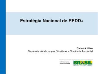 Estratégia Nacional de REDD+