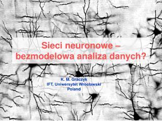 Sieci neuronowe – bezmodelowa analiza danych?