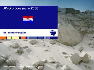 DINO processes in 2008