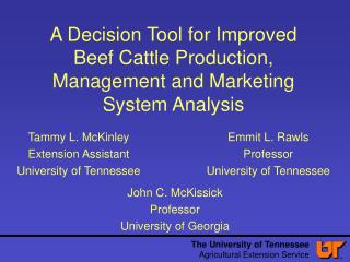 A Decision Tool for Improved Beef Cattle Production, Management and Marketing System Analysis