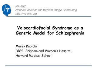 Velocardiofacial Syndrome as a Genetic Model for Schizophrenia