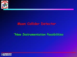 Muon Collider Detector