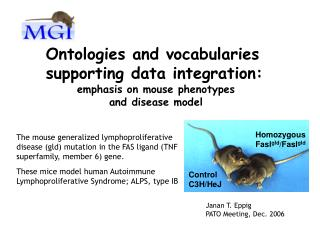 Ontologies and vocabularies  supporting data integration: emphasis on mouse phenotypes