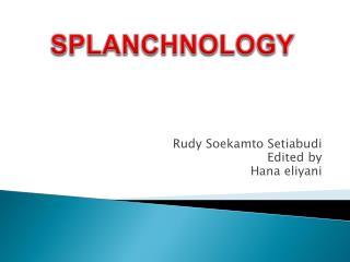 Rudy Soekamto Setiabudi Edited by Hana eliyani