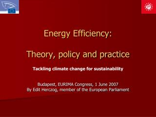 Energy Efficiency: Theory, policy and practice