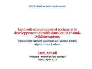 PROGRAMME Société Civile –Euromed -