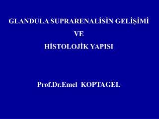 GLANDULA SUPRARENALİSİN GELİŞİMİ  VE HİSTOLOJİK YAPISI   Prof.Dr.Emel  KOPTAGEL