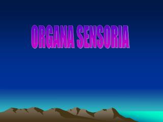 ORGANA SENSORIA