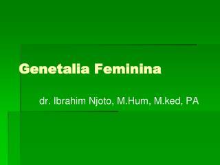 Genetalia Feminina