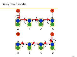 Daisy chain model