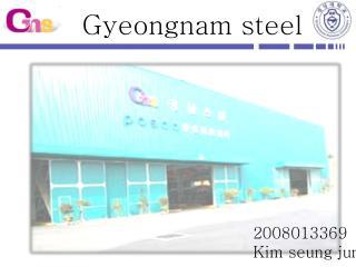 Gyeongnam steel