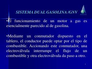 SISTEMA DUAL GASOLINA /GNV