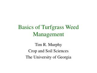 Basics of Turfgrass Weed Management