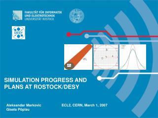 SIMULATION PROGRESS AND PLANS AT ROSTOCK/DESY