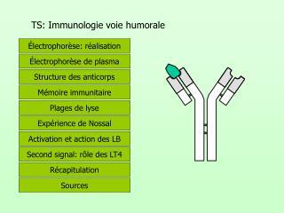 TS: Immunologie voie humorale