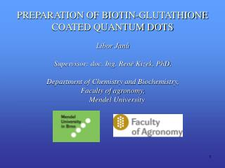 PREPARATION OF BIOTIN-GLUTATHIONE COATED QUANTUM DOTS
