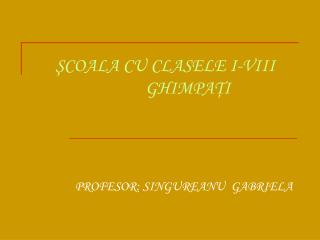 PROFESOR: SINGUREANU  GABRIELA