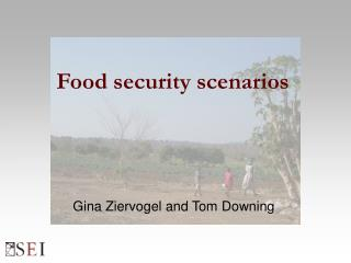 Food security scenarios