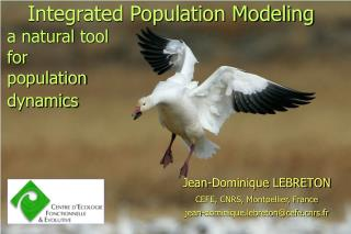 Integrated Population Modeling a natural tool  for  population  dynamics