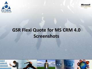 GSR Flexi Quote for MS CRM 4.0                           Screenshots