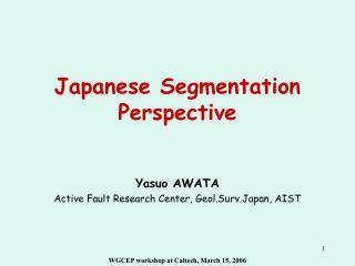 Japanese Segmentation Perspective