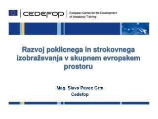 R azvoj poklicnega in strokovnega izobraževanja v skupnem evropskem prostoru