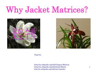 Why Jacket Matrices?