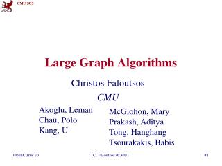 Large Graph Algorithms
